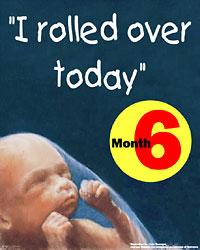 month6